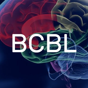 Basque Center on Cognition, Brain and Language